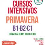 Cursos intensivos Exámenes Cambridge de Junio